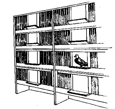 Типовая голубятня
